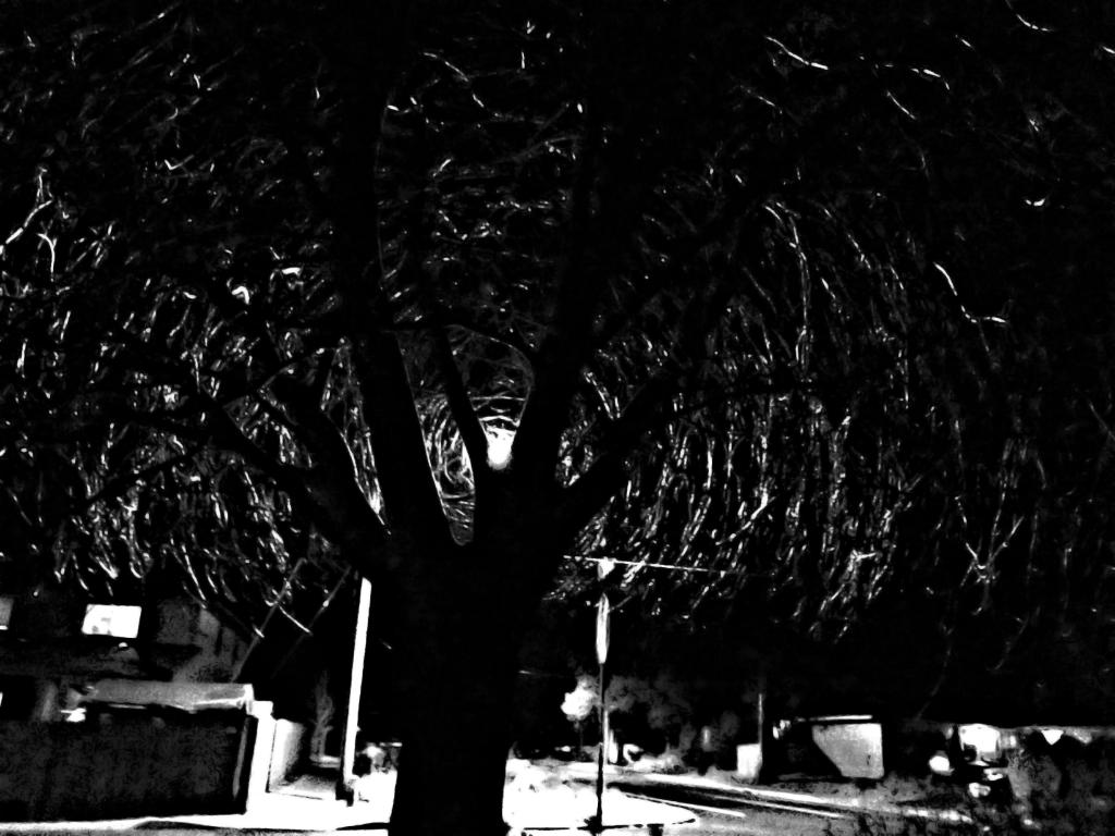 Nighttime street light highlight